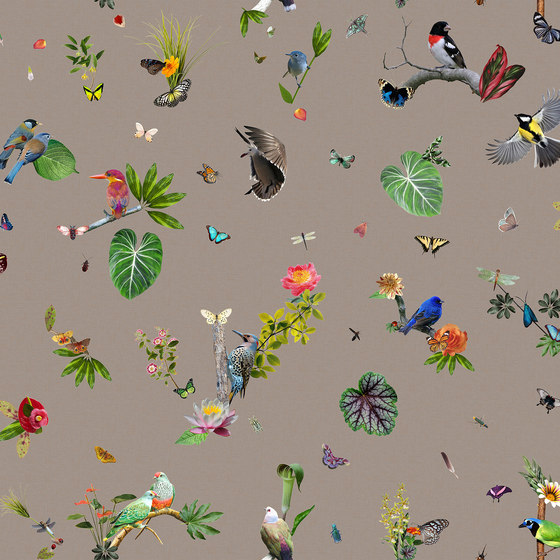 Garden of Eden | Bird Broadloom by moooi carpets | Wall-to-wall carpets