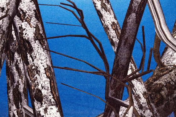 Liquid | Birch rug von moooi carpets | Formatteppiche