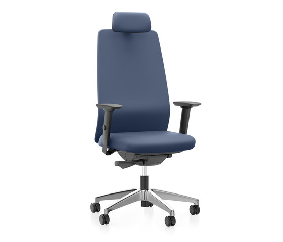 AIMis1 1S32 by Interstuhl | Office chairs