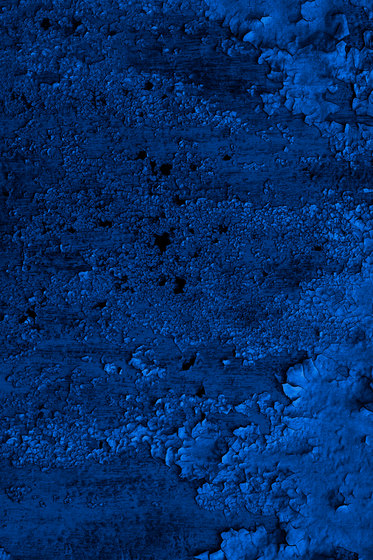 Oxidized | dark blue by moooi carpets | Wall-to-wall carpets