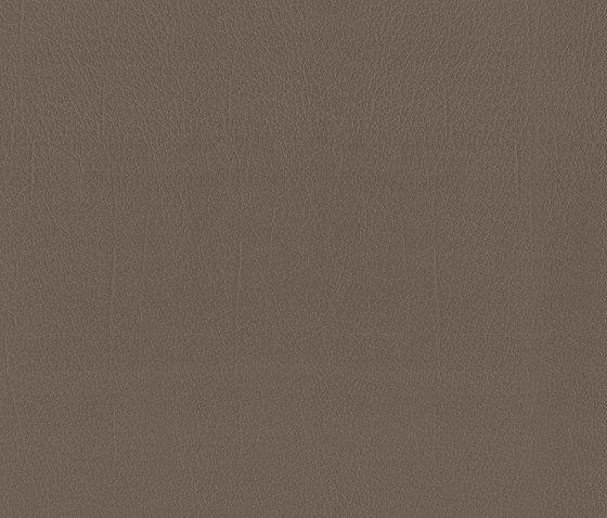 Como | Moss by MI-Millennium International | Faux leather