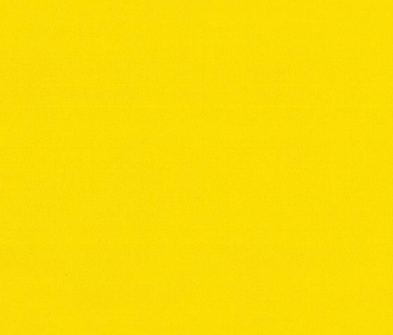 Capri   Lemon by MI-Millennium International   Faux leather