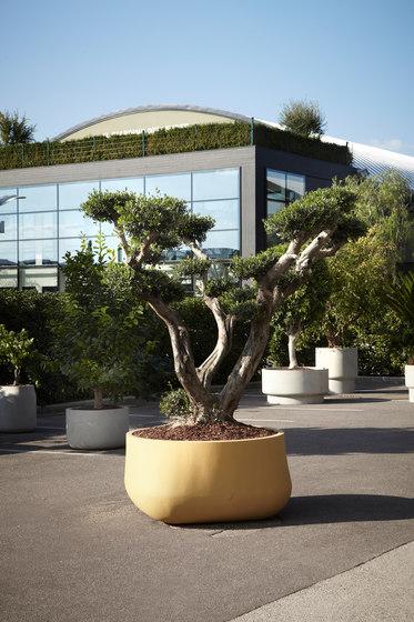 IgigantI di antoniolupi | Vasi piante