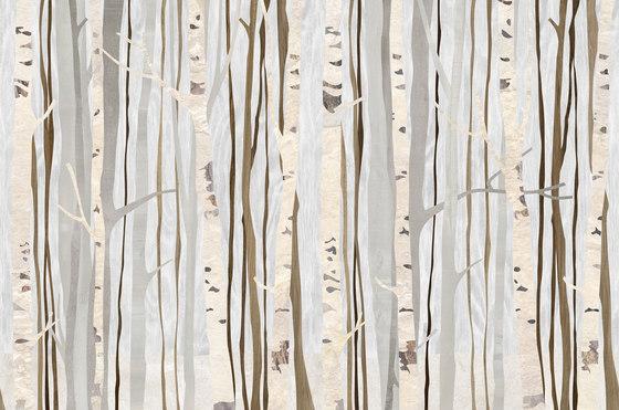 Alberi Infinity de TECNOGRAFICA | Peintures murales / art