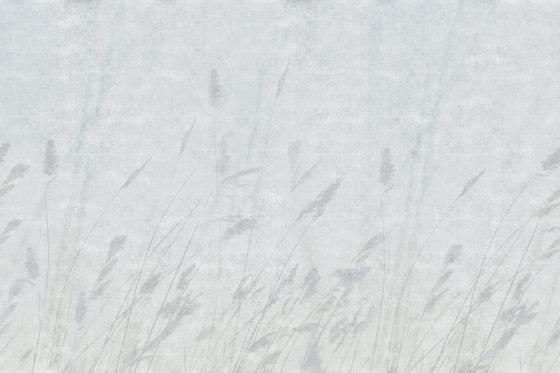 Bloom Blur by GLAMORA | Bespoke wall coverings