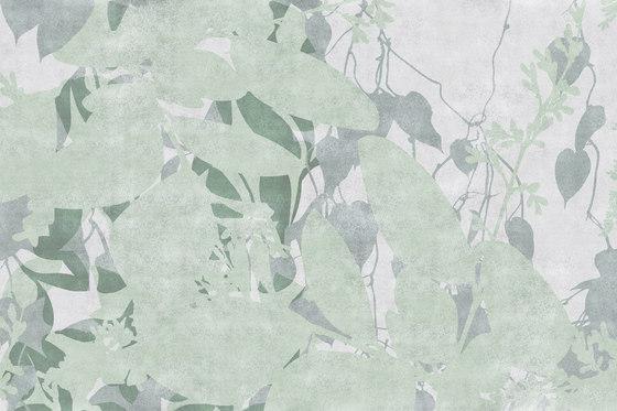 Spray Creeper von GLAMORA | Wandbeläge