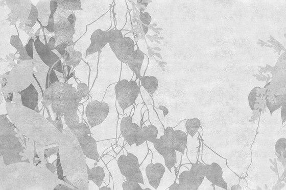 Spray Creeper di GLAMORA | Rivestimenti su misura