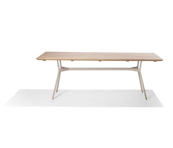 Branch Dining Table von Tribù | Esstische