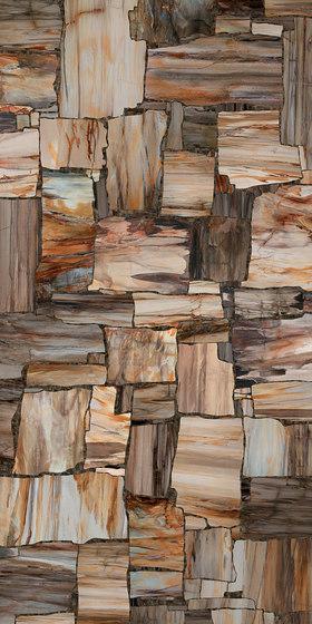 Petrified von Mirage | Keramik Fliesen