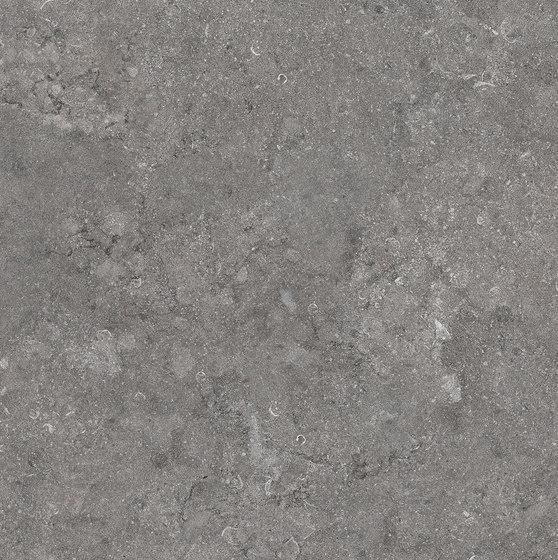 Gris Belge NE 31 by Mirage | Ceramic tiles