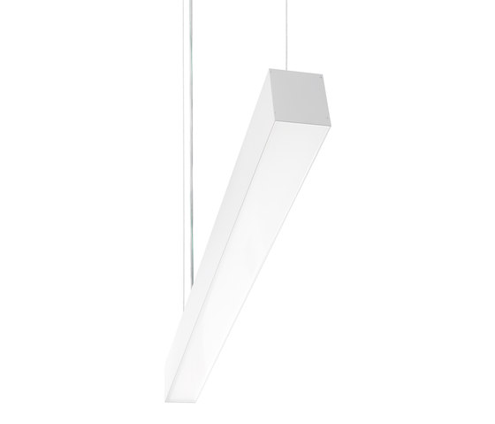 Prima | M CDP /S by Buck | Suspended lights