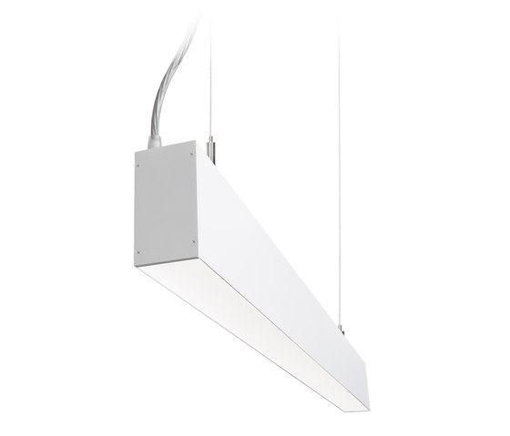 Dual | S CDP by Buck | Suspended lights