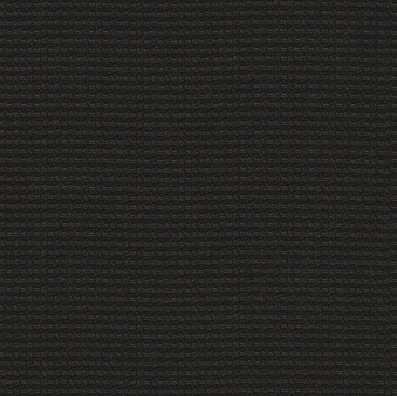 Cross Dye | Logwood von Luum Fabrics | Dekorstoffe