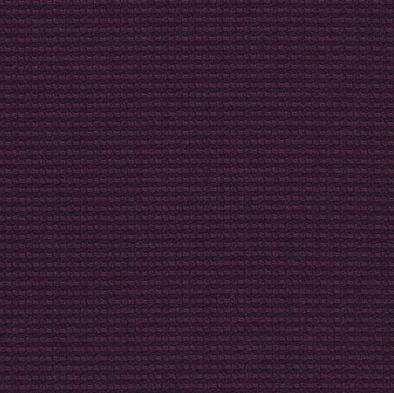 Cross Dye | Plum von Luum Fabrics | Dekorstoffe