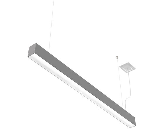 Prima | S CDP /S by Buck | Suspended lights