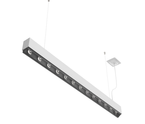 Prima | S WW /S by Buck | Suspended lights