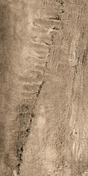 La Fabbrica -Wild - Tiger by La Fabbrica | Floor tiles