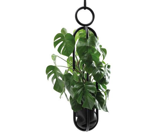 Blumenampel Edition hanging room object by Atelier Haußmann   Plant pots