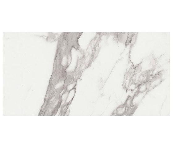 Marstood | Marble 01 | Statuario | 30x60 matt von TERRATINTA GROUP | Keramik Fliesen