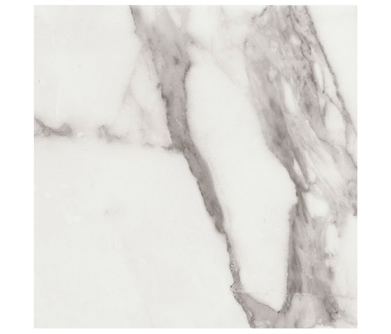 Marstood | Marble 01 | Statuario | 60x60 matt von TERRATINTA GROUP | Keramik Fliesen