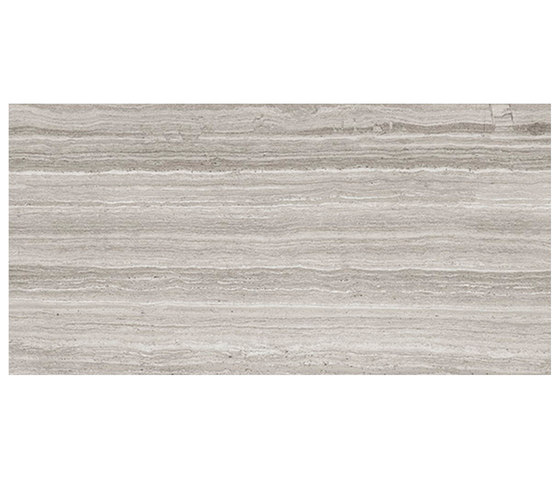 Marstood | Marble 02 | Silver Travertine | 30x60 polished di TERRATINTA GROUP | Piastrelle ceramica