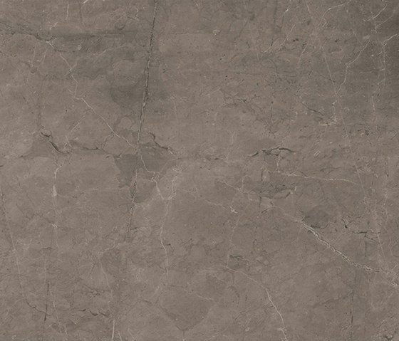 Marstood   Marble 03   Fior Di Bosco   60x120 polished di TERRATINTA GROUP   Piastrelle ceramica