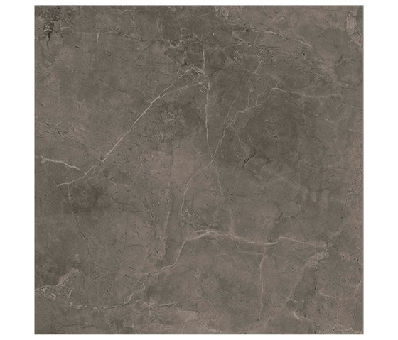 Marstood | Marble 03 | Fior Di Bosco | 60x60 polished von TERRATINTA GROUP | Keramik Fliesen