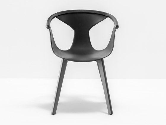 Fox Armchair 3725 Restaurant Chairs From Pedrali
