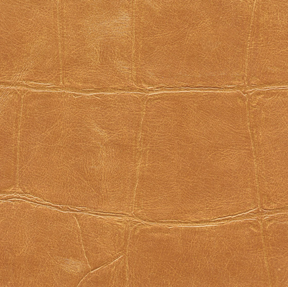 ABCG | Big Croco HPC CV 105 15 de Elitis | Revêtements muraux / papiers peint