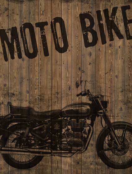 Indewo® Graphic | Bike by europlac | Wood panels