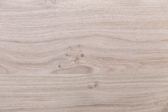 Quercaplex® | Knotty Oak small Knots by europlac | Wood panels