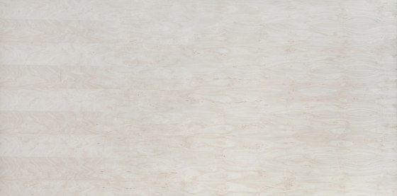 Edelholzcompact   Birch excentrically cut by europlac   Wood panels