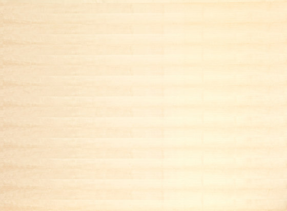Edelholzcompact   Birch sliced by europlac   Wood panels