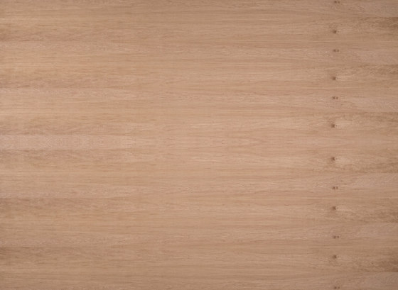 Edelholzcompact | Alder european by europlac | Wood panels