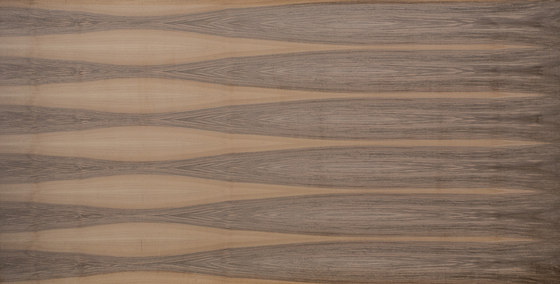 Edelholzcompact | Walnut european by europlac | Wood panels