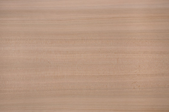 Edelholzcompact | Cedar by europlac | Wood panels