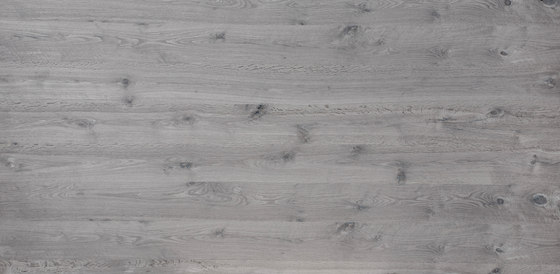 Rustica®Basis  | Beam Oak Color vintage gray by europlac | Wood panels