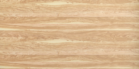 Rustica®Basis | Olive Tree by europlac | Wood panels