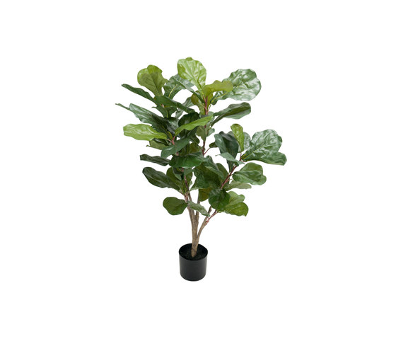 Fiddle leaf fig tree small by Götessons | Artificial plants