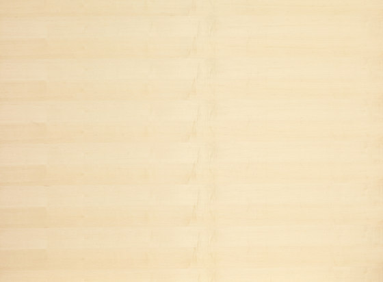 B-Plex®Light | Sycamore european de europlac | Planchas de madera