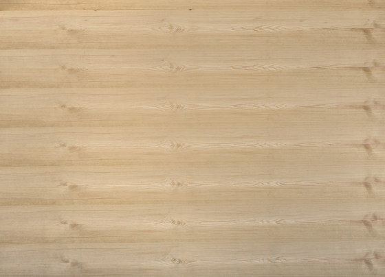 B-Plex®Light | Pine european by europlac | Wood panels