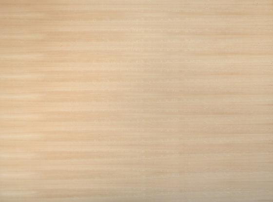 Spa-Plex® | Beech unsteamed de europlac | Planchas de madera
