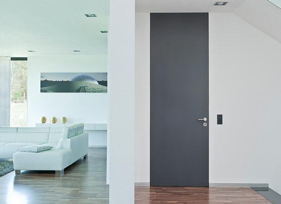 Specialty Doors - Tall Floor To Ceiling