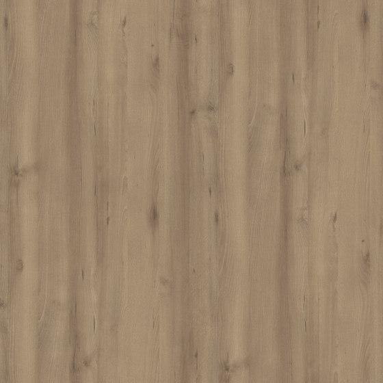 Scandic Beech Dark de Pfleiderer   Planchas de madera