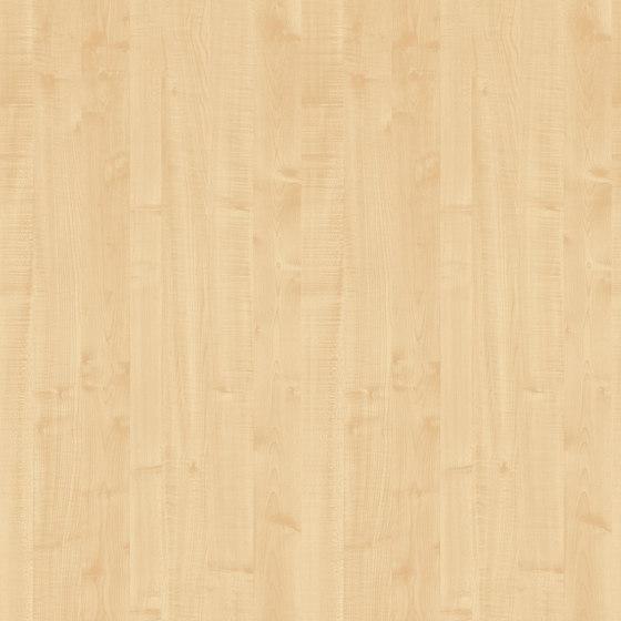 Royal Maple de Pfleiderer | Planchas de madera