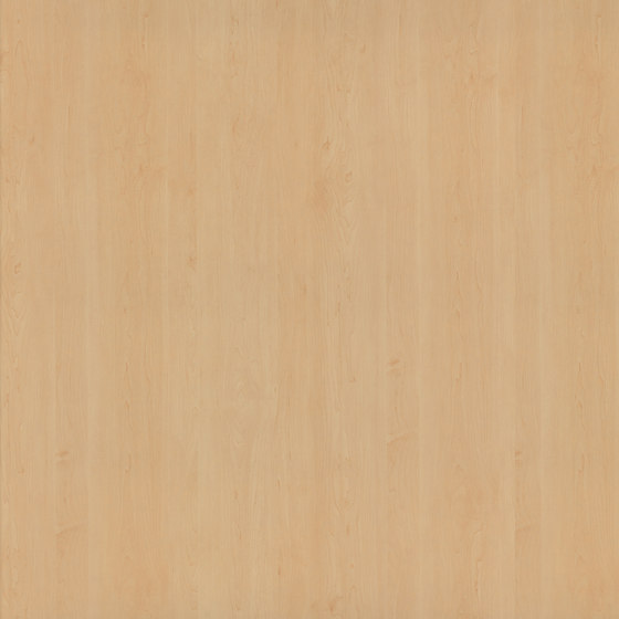 Sycamore by Pfleiderer   Wood panels