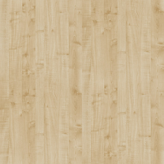 Maple Thansau de Pfleiderer | Planchas