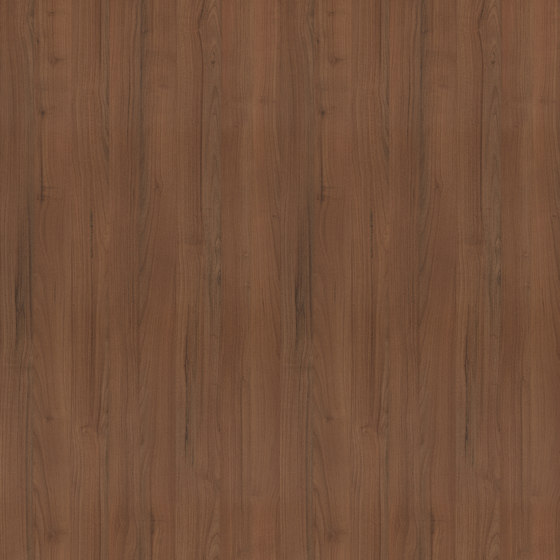 Ravenna Walnut by Pfleiderer | Wood panels