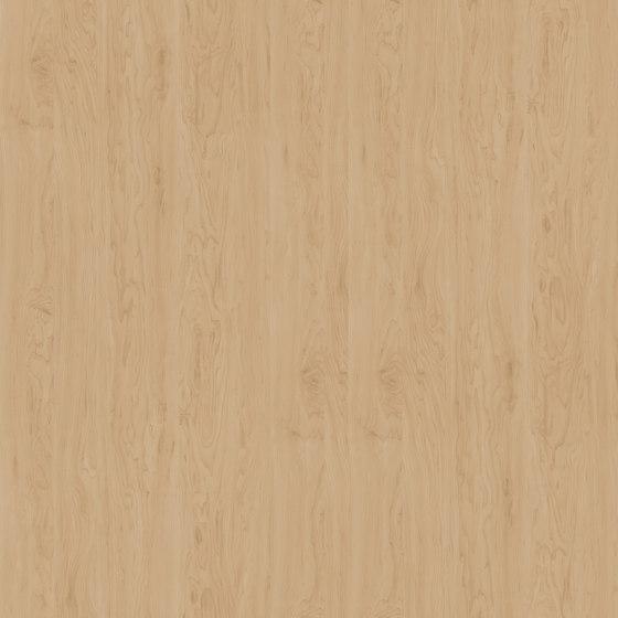 Birch Alaska by Pfleiderer | Wood panels
