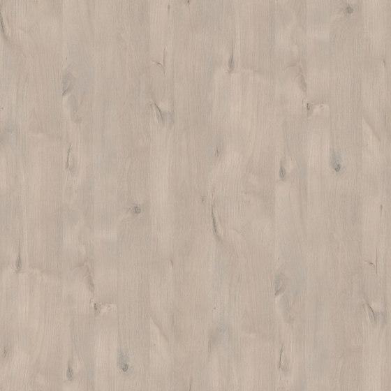 Panama Alder by Pfleiderer | Wood panels